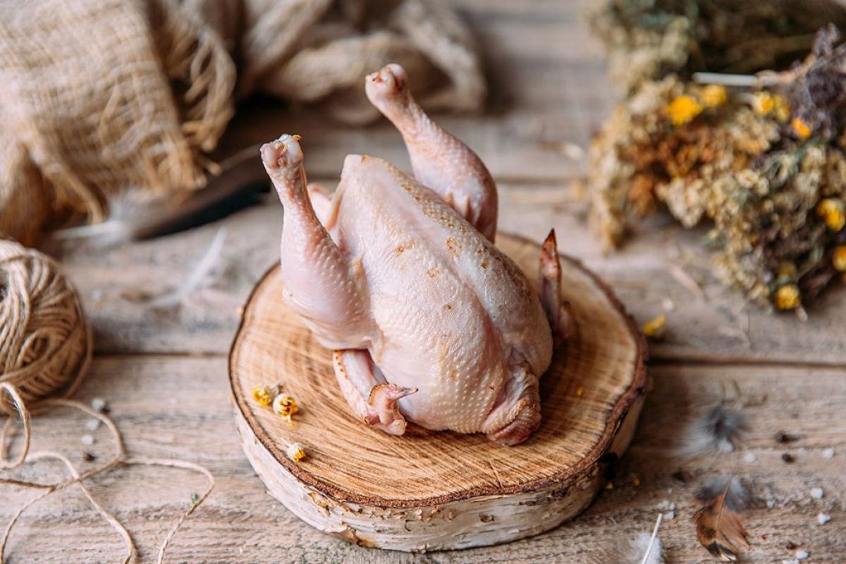 Цыпленок-корнишон халяль 500-600 г охлажденный