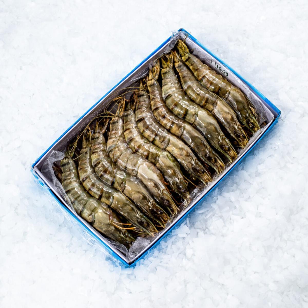 Креветки тигровые с головой 16-20 шт свежемороженые