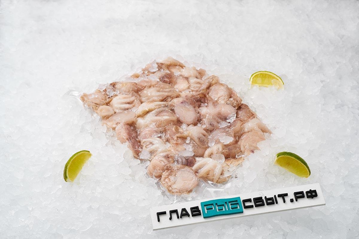 Осьминоги молодые свежемороженые