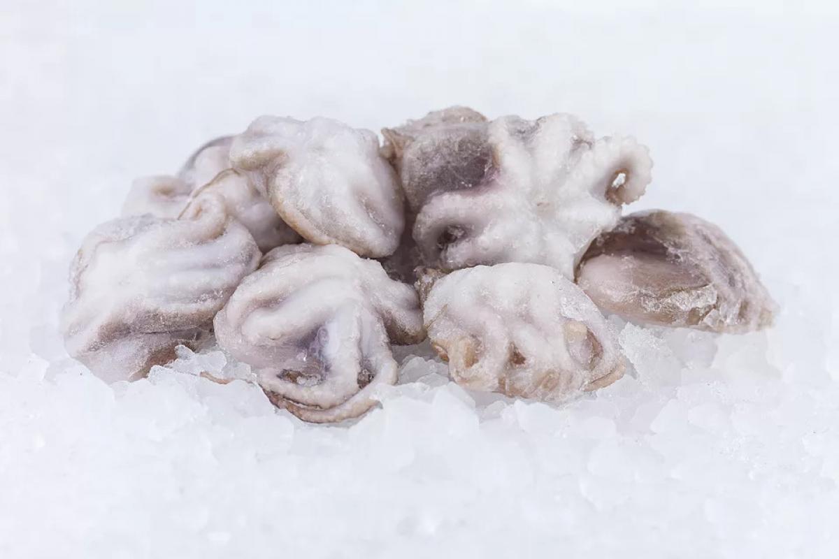 Осьминоги молодые 60-80 шт свежемороженые