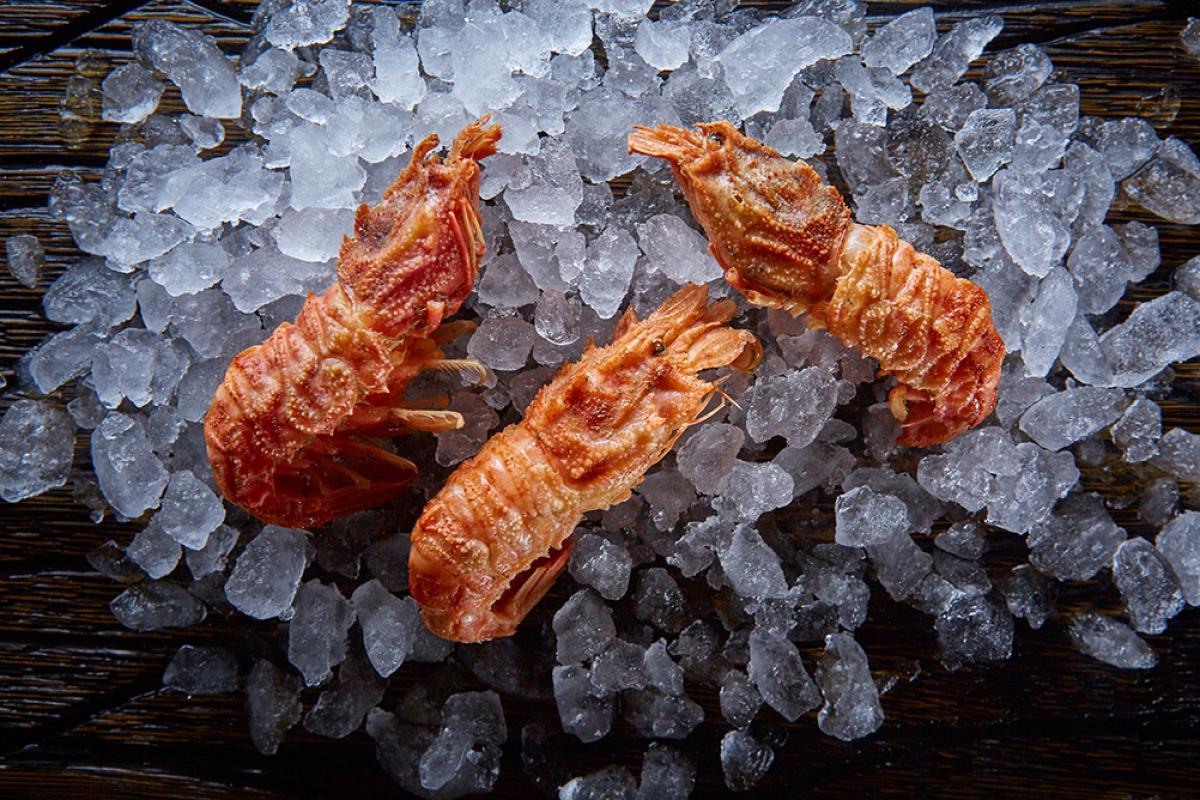 Креветки медвежонок 30 шт варено-мороженые